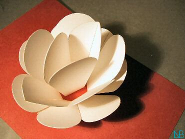 pop-up card waterlily